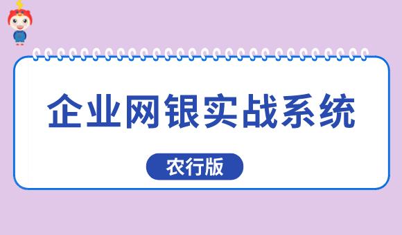 企业网银实战系统(农行版)
